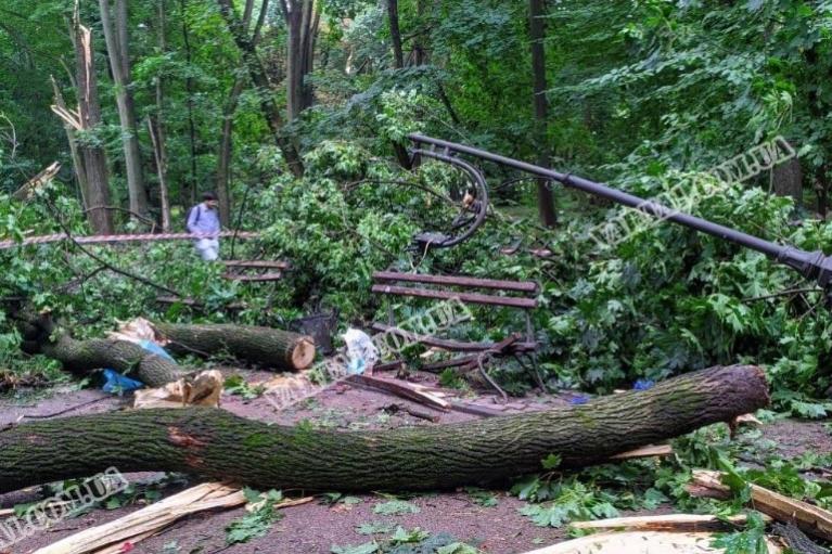 Появились жуткие подробности гибели молодой пары во время урагана во Львове (ВИДЕО)
