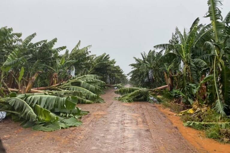 В Австралії через ураган  40 тисяч домівок залишилися без світла
