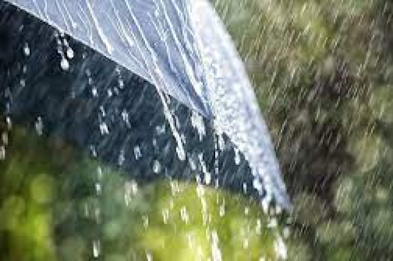 Дощі, часом грози: прогноз погоди на суботу (КАРТА)