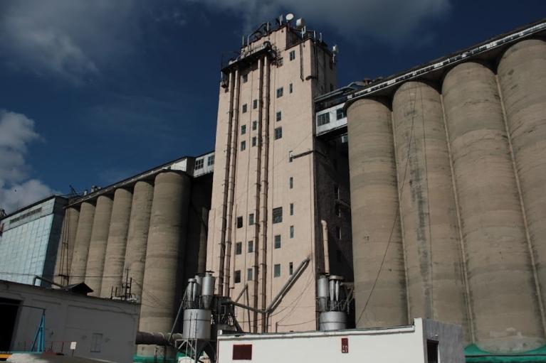 """""""Мыши съели"""" зерна на 15 млн грн: ВАКС отправил подозреваемого за решетку"""