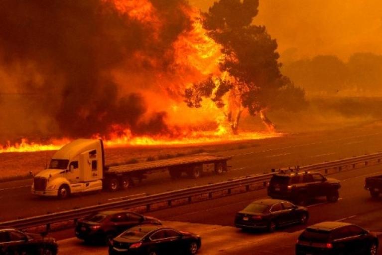 У США ліси охоплені вогнем: пожежі на піку, режим НС введено в 5 штатах (ВІДЕО)