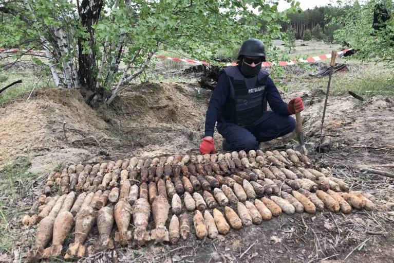 В Донецкой области в лесу нашли почти полтысячи старых боеприпасов