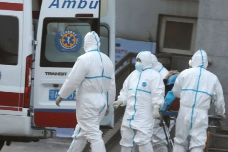 В Украине от COVID-19 умирают втрое больше, чем рассказывает Минздрав, - Национальная академия наук