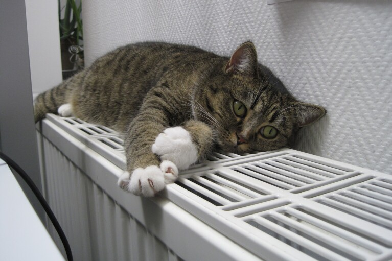 Жителям Киева начали отключать отопление