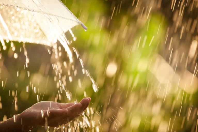 Дожди на западе и до +29 на востоке: погода в Украине на воскресенье (КАРТА)