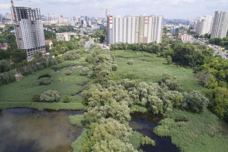 Высотки вместо парка. Как экологическая комиссия Киеврады забыла о Совских прудах