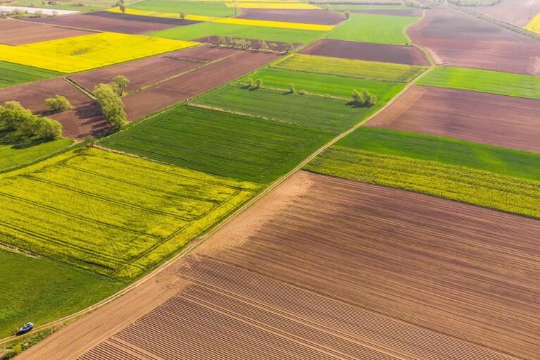 У Кабміні готують збільшення прав українців на землю