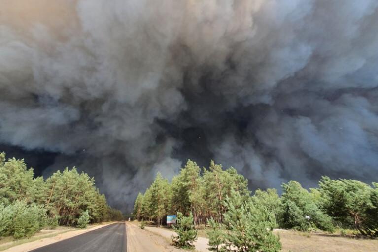 Число жертв масштабных пожаров на Луганщине возросло
