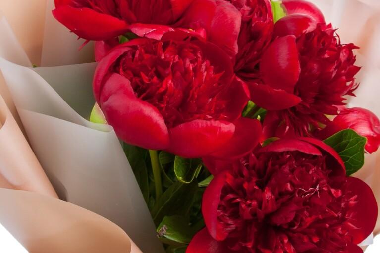Букет цветов от Dicentra – подарок, который всегда под рукой