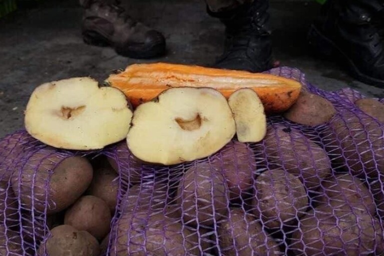 Эксперт спрогнозировал значительное подорожание продуктов питания в Украине