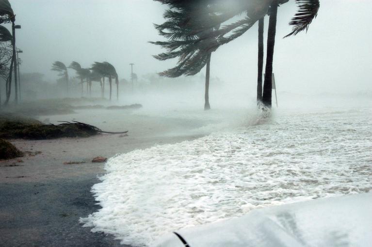 Скорость ветра — до 175 км/ч: на Индию обрушился мощный циклон