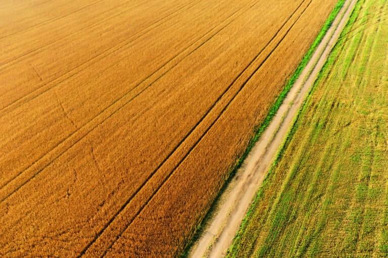 Зеленский узаконил продажу земли на онлайн-аукционах