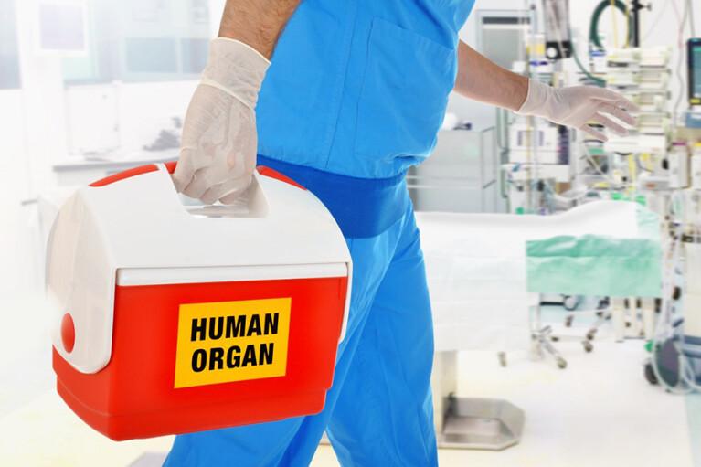 Чужое сердце. Как в Украине заработала система трансплантации органов