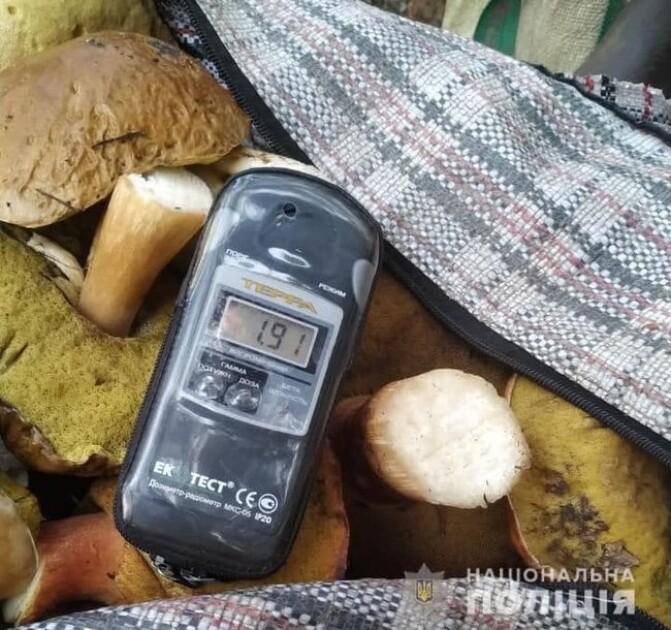 60 кг радиоактивных грибов пытались вывезти из зоны ЧАЭС