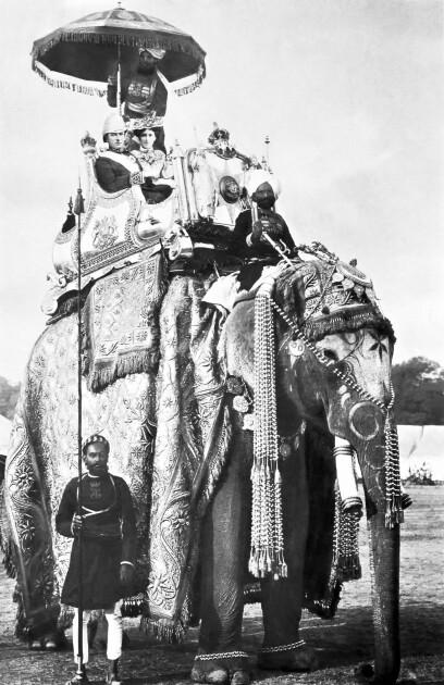 Справжні інтереси лорда були далекими від України та Польщі. Джордж Керзон з дружиною в період виконання ним обов'язків віце-короля Британської Індії